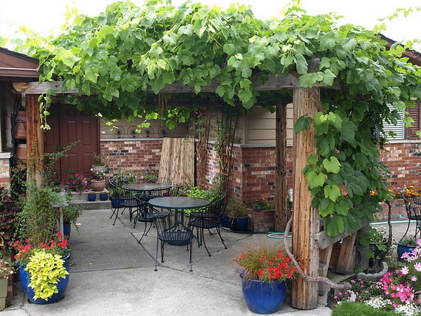 small patio decoration ideas wooden pergola flowers