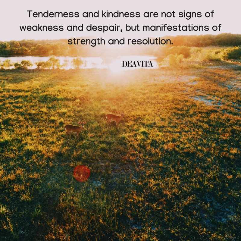 quotes about tenderness and kindness