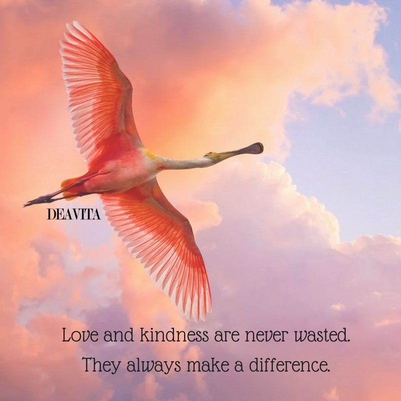 Love and kindness photos and quotes