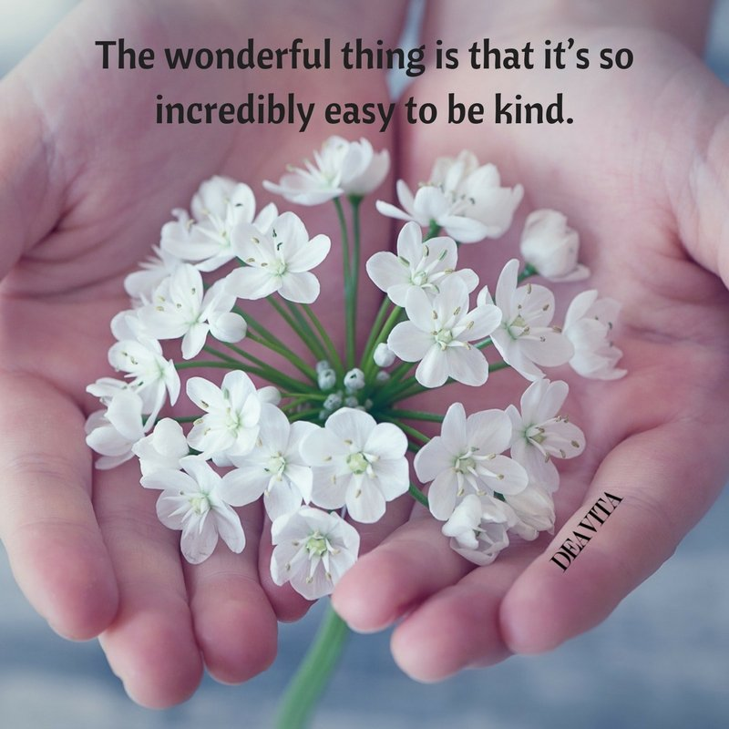easy to be kind quotes texts sayings