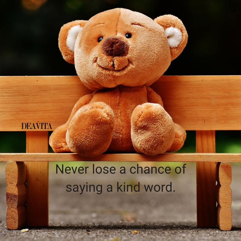 best sayings and quotes Never lose a chance of saying a kind word