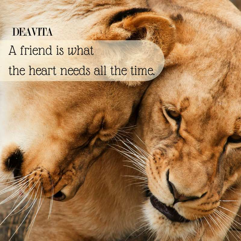 short inspirational quotes about friendship