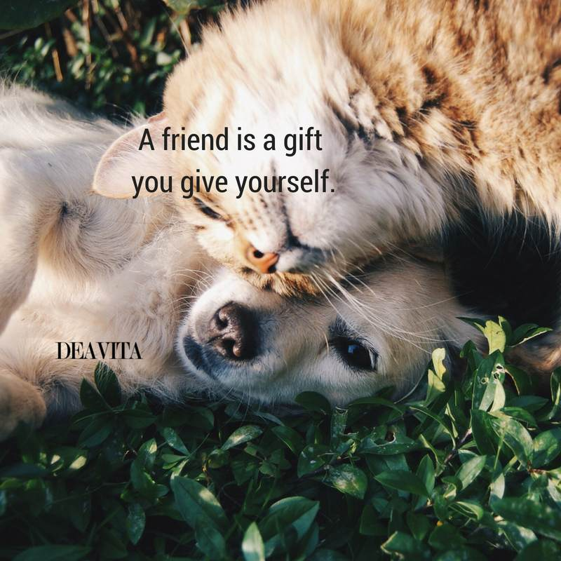 friendship quotes best friend sayings
