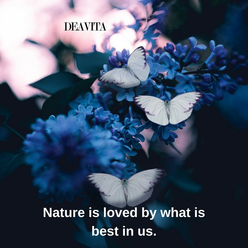 wise sayings Nature is loved by what is best in us