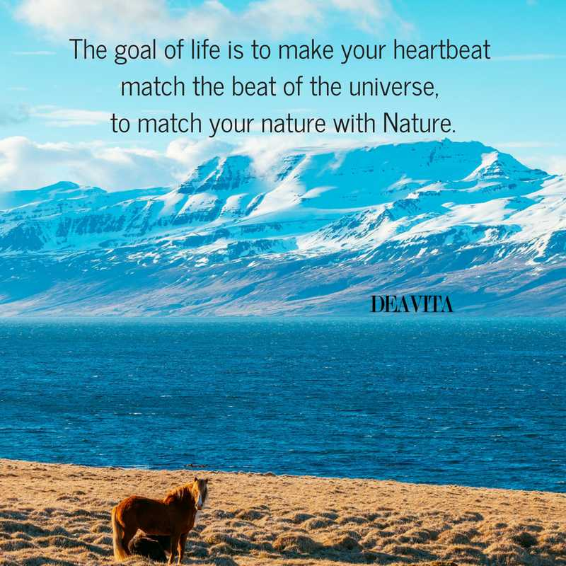 The goal of life universe and nature sayings
