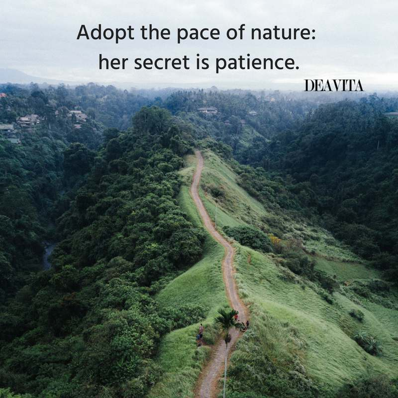 short nature quotes wih amazing photos