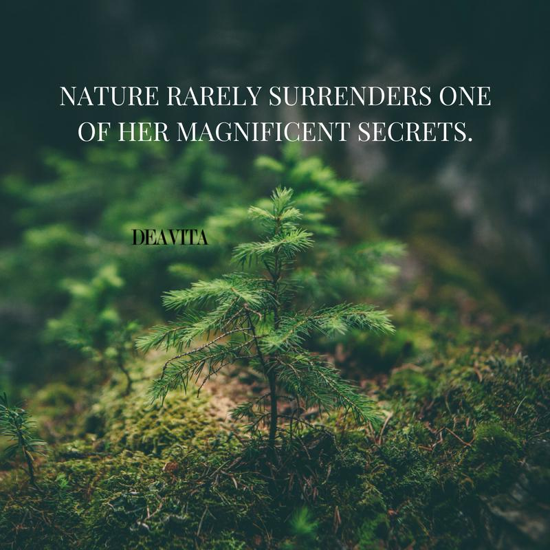 nature secrets sayings with deep meaning