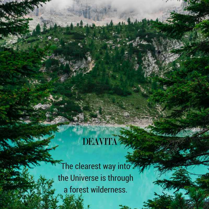 nature and wilderness quotes and sayings