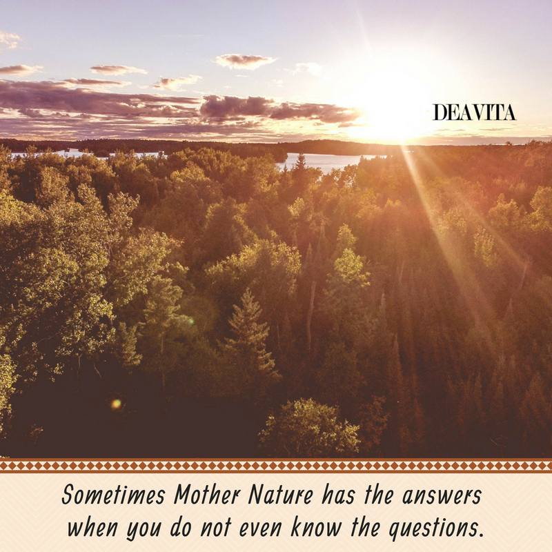 Mother Nature questions and answers cards