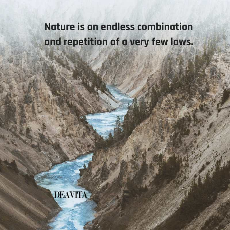 laws of Nature sayings and quotes