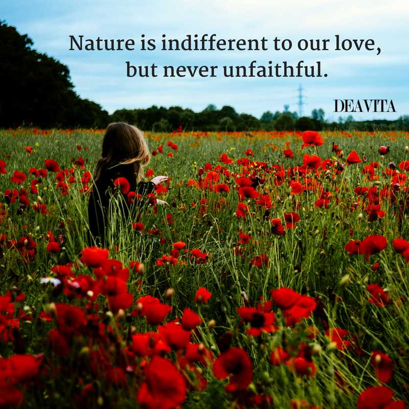 inspiring short Nature and love quotes