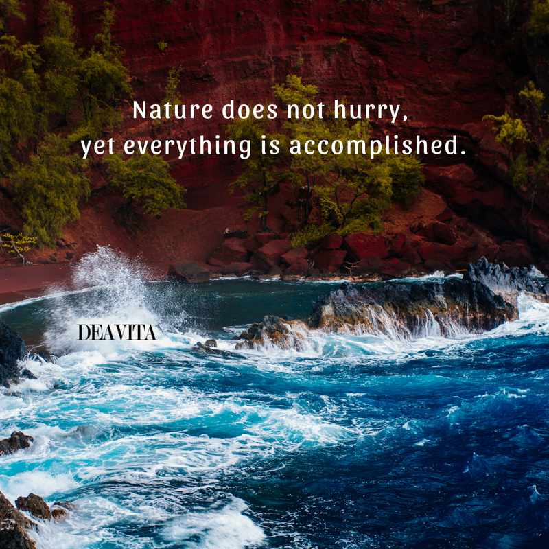 best short quotes about nature patience sayings