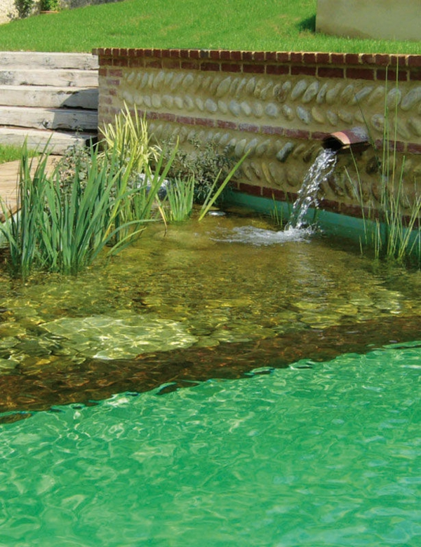 Water purification swimming pond design natural pool