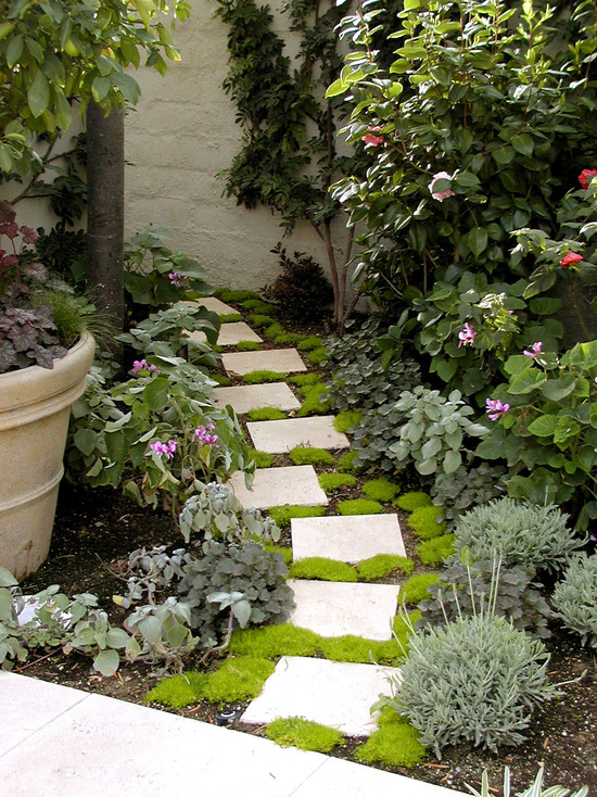playful design garden path stepping stones potted plants