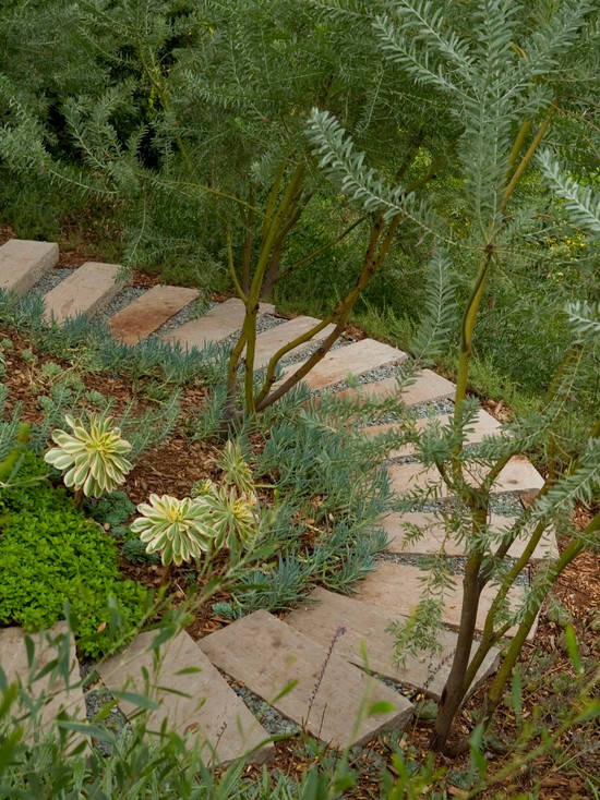 contemporary landscape stepping stones stairs