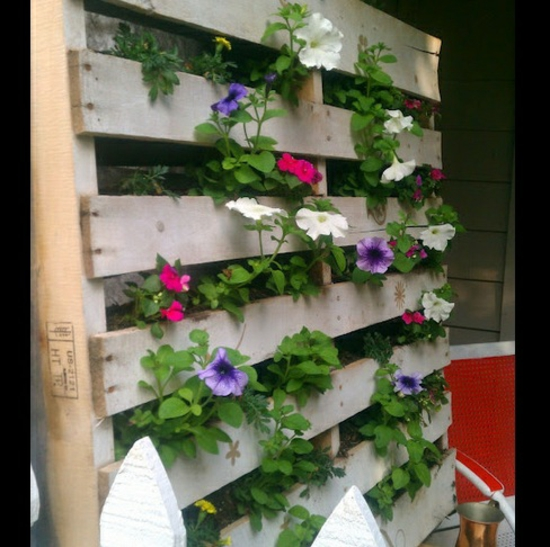 Plant Containers wooden pallet racks