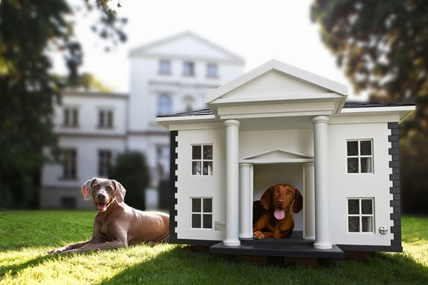 stunning dog house design colonial style luxury house