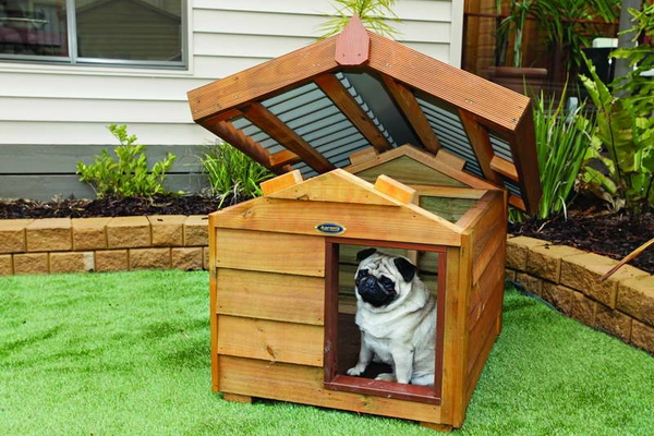 Luxury dog house ideas removable roof