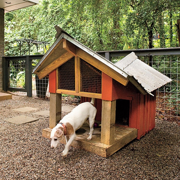 wooden dog home with deck sloping roof