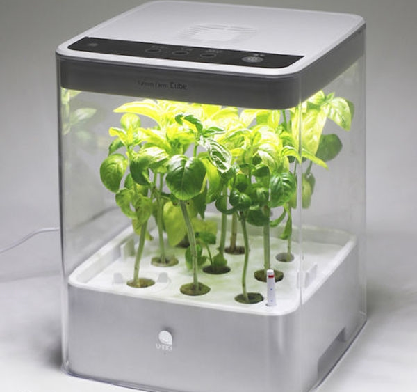 Grow Cabinet and Grow Box Ideas - How to Develop Indoor Plants