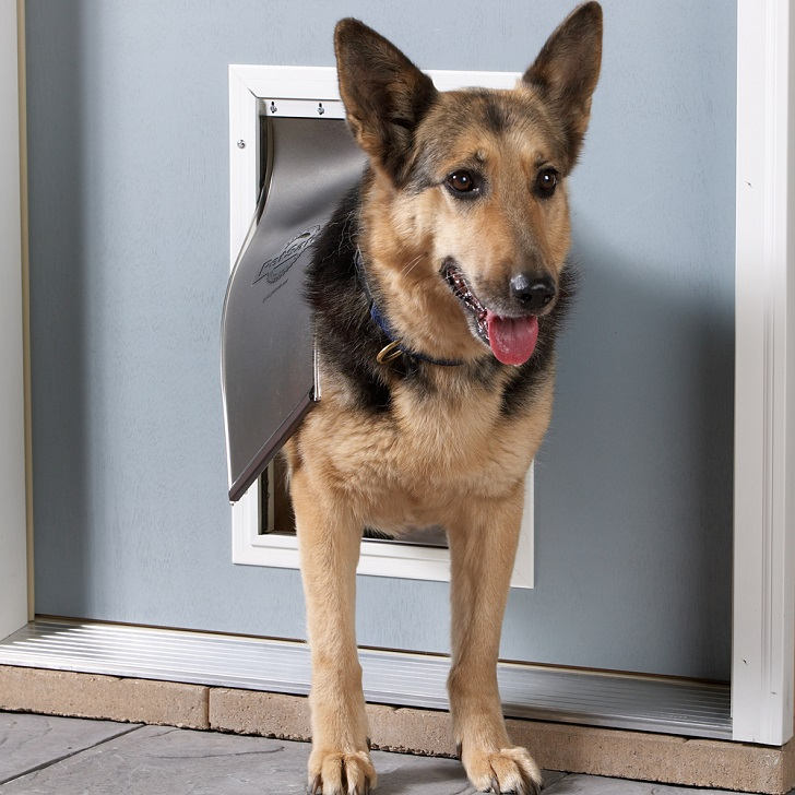 dog doors types how to measure how to choose the size of dog door