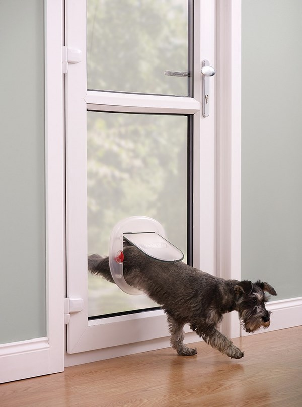 modern pros cons types how to choose dog door