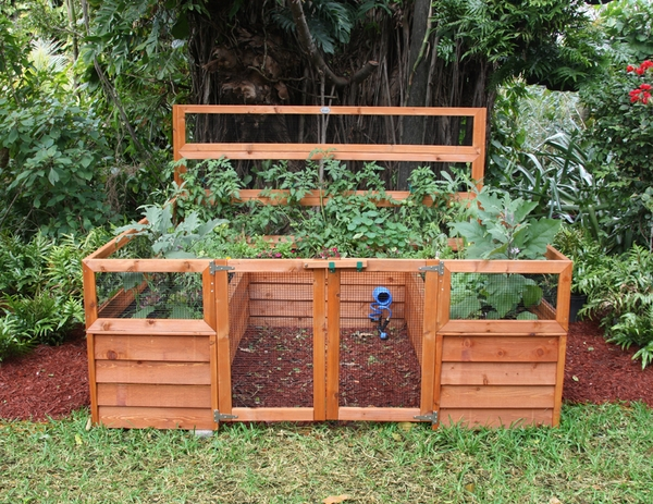 vegetable small wooden beds raised
