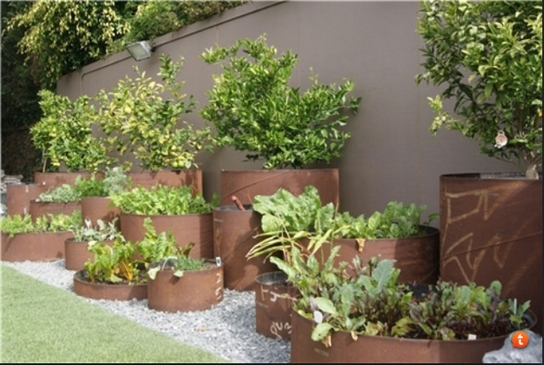 plant containers fence