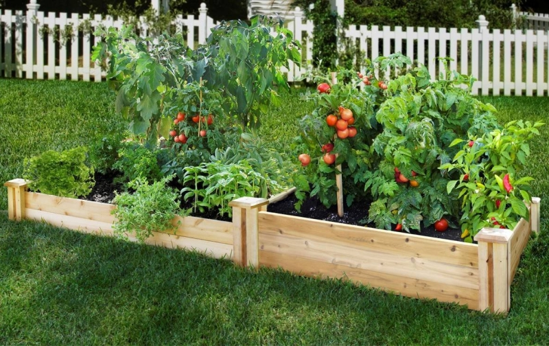 patio wooden raised beds
