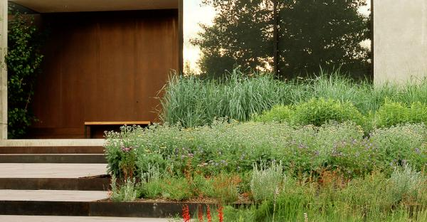 Modern Landscaping - 20 ideas for a stylish garden