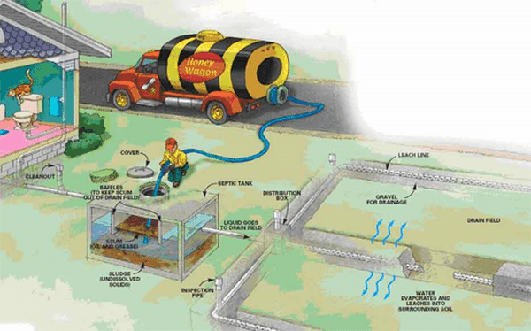 how septic systems work cleaning pumping maintenance schedule