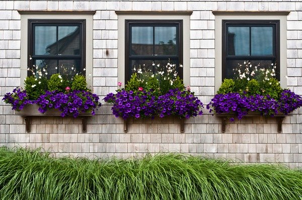 house exterior design ideas easy DIY projects window boxes