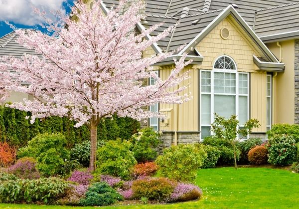 curb appeal and DIY landscaping ideas