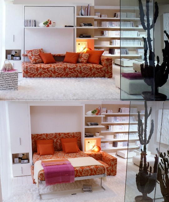 cabinet folding bed sofa combination