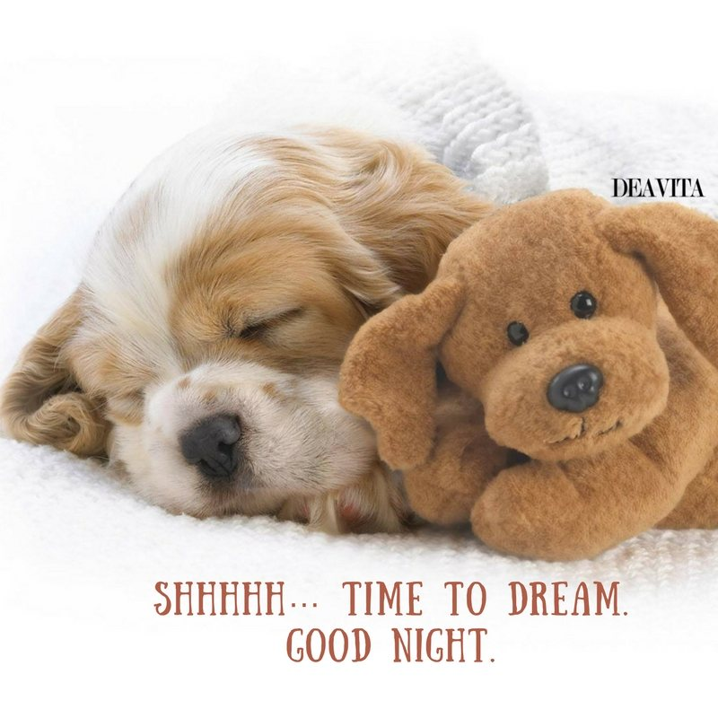 adorable good night cards and texts Shhhhh Time to dream