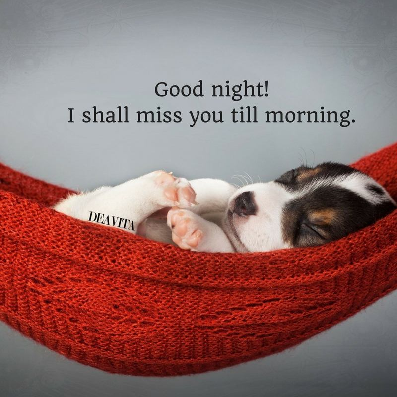 miss you quotes Good night