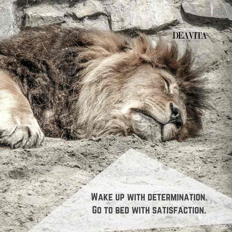 cool sayings Wake up with determination go to bed
