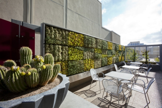 rooftop balcony gardening terrace vertical green wall