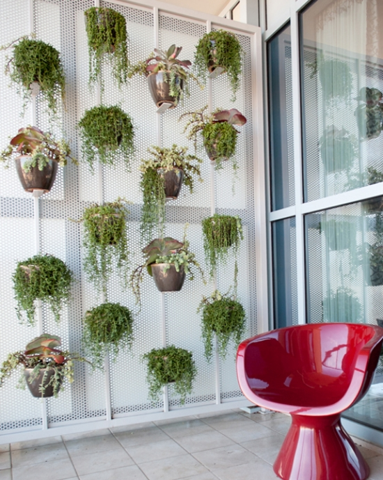 ideas Vertical Gardens