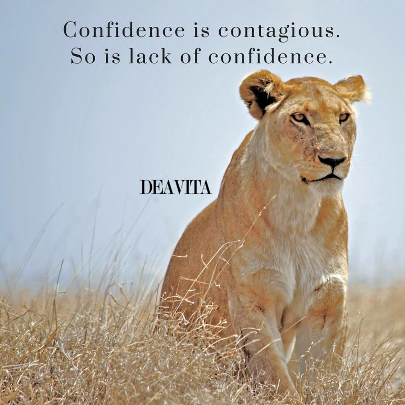 best short quotes about confidence