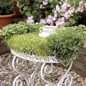 miniature gardening wrought iron planted table