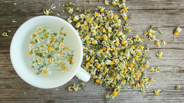 chamomile tea herbs and plants to reduce skin swelling
