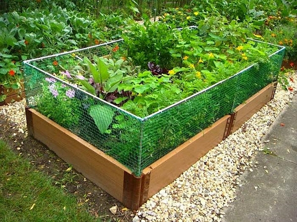 raised garden bed with fence landscape ideas